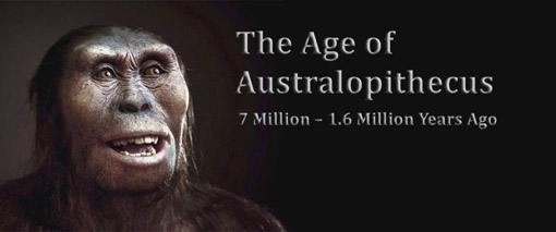 Atlas of Human Evolution